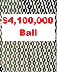4100000-bail-miscellaneous-088-200w